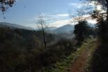 Els boscos dels bandolers