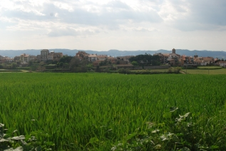 Taradell: La Plana rural